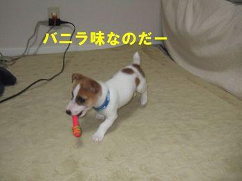 DSCF0719☆.jpg