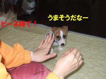 DSCF0786★.JPG