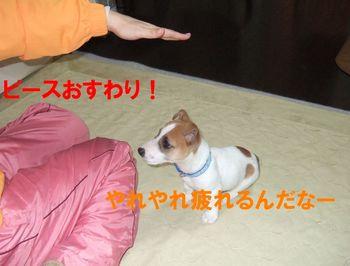 DSCF0788★.JPG