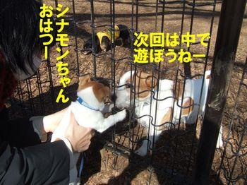DSCF0819★.JPG