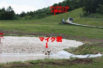E29885IMG_1440.jpg