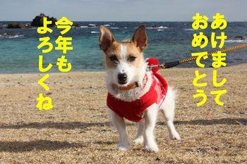 コピー ~ IMG_4121.JPG