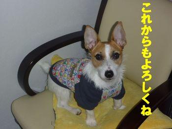 コピー ~ P1000059.JPG