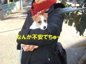 DSCF0748☆.jpg