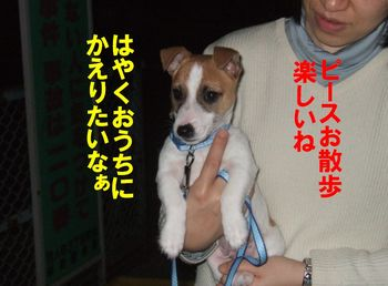 DSCF0779★.JPG