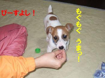 DSCF0787★.JPG