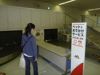 P1010603 - コピー.JPG